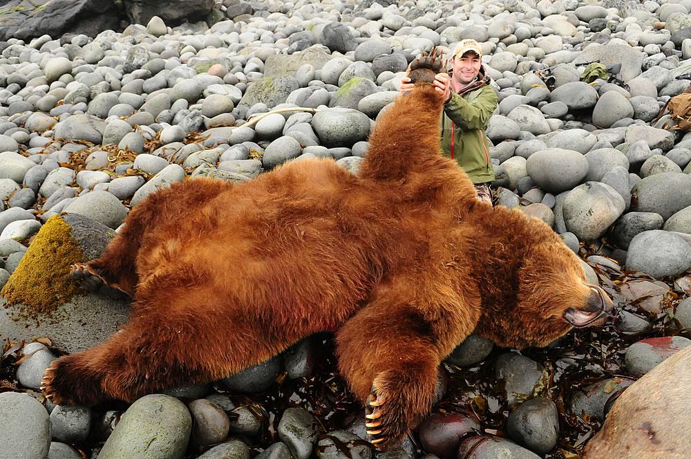 Alaska Brown Bear Hunting R Amp R Guide Corey Knowlton